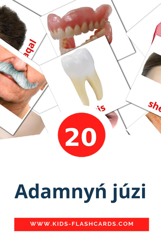20 Adamnyń júzі Picture Cards for Kindergarden in kazakh(latin)