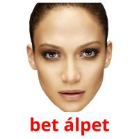 bet álpet picture flashcards