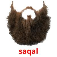 saqal picture flashcards