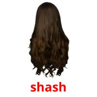 shash picture flashcards