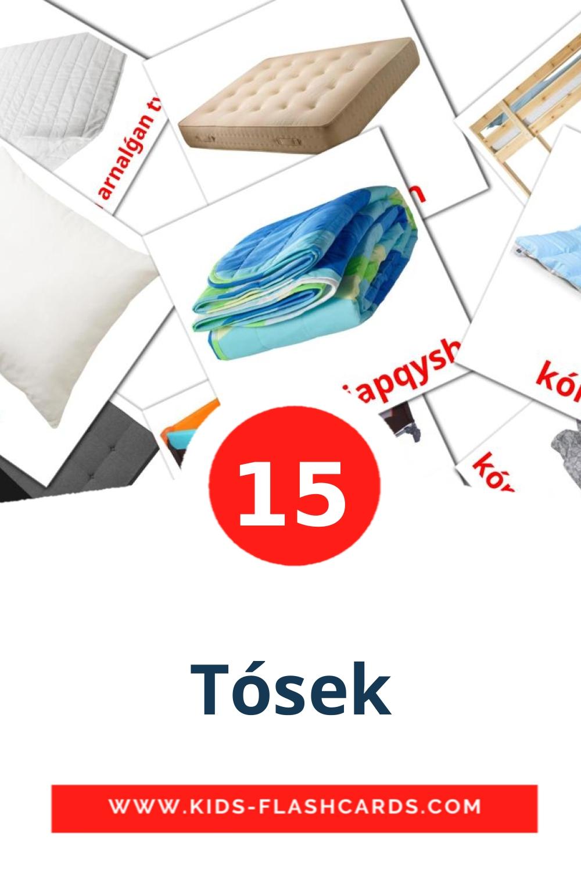 15 Tósek Picture Cards for Kindergarden in kazakh(latin)