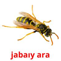 jabaıy ara picture flashcards