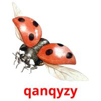 qanqyzy picture flashcards