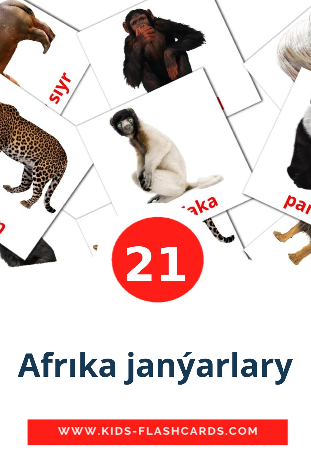 21 Afrıka janýarlary Picture Cards for Kindergarden in kazakh(latin)