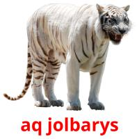 aq jolbarys picture flashcards