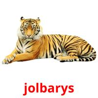 jolbarys picture flashcards