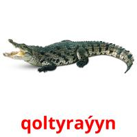 qoltyraýyn picture flashcards