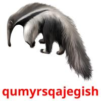 qumyrsqajegіsh picture flashcards