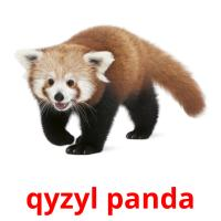 qyzyl panda picture flashcards