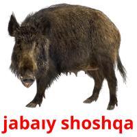 jabaıy shoshqa picture flashcards