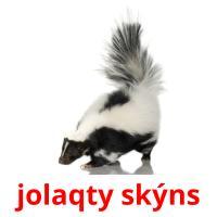 jolaqty skýns picture flashcards