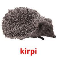kіrpі picture flashcards