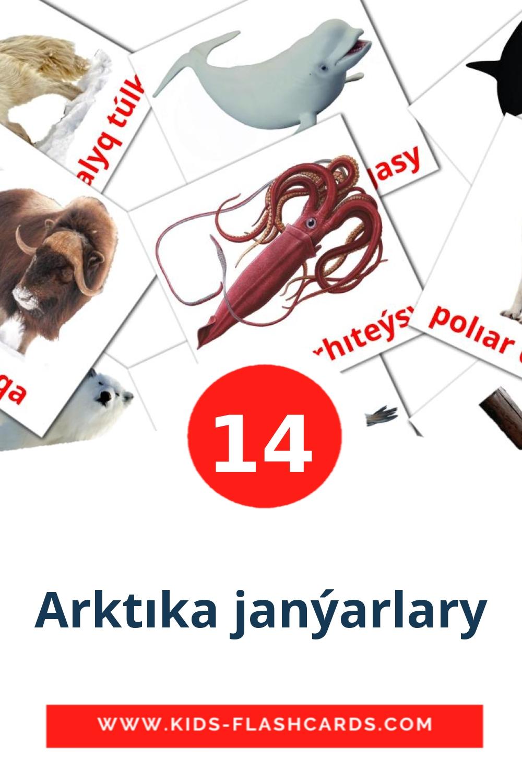 14 Arktıka janýarlary Picture Cards for Kindergarden in kazakh(latin)