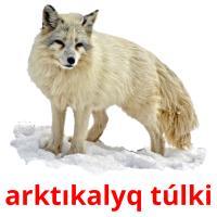 arktıkalyq túlkі picture flashcards