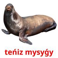 teńіz mysyǵy picture flashcards