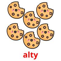 alty picture flashcards