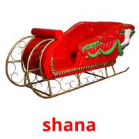 shana picture flashcards