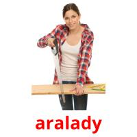 aralady picture flashcards