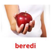 beredі picture flashcards