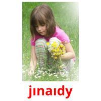 jınaıdy picture flashcards