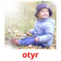 otyr picture flashcards