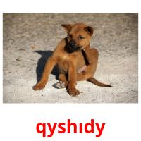qyshıdy picture flashcards