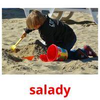 salady picture flashcards