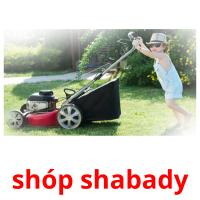 shóp shabady picture flashcards