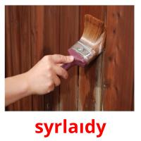 syrlaıdy picture flashcards