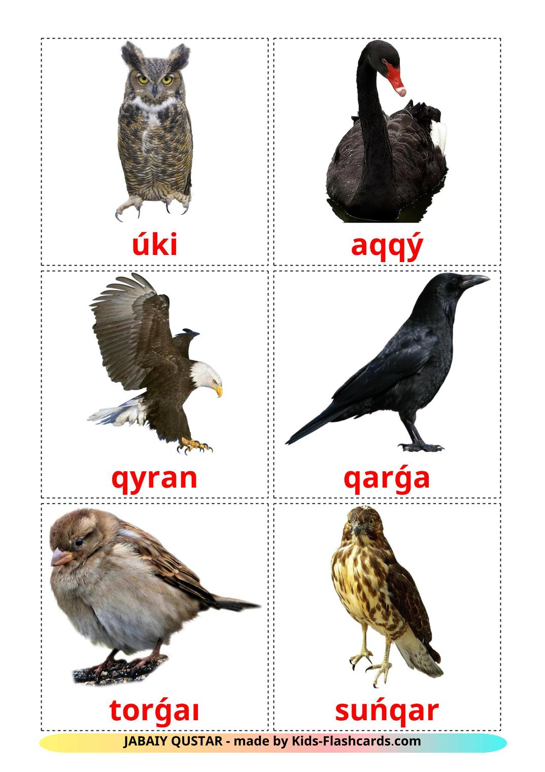 Wild birds - 16 Free Printable kazakh(latin) Flashcards