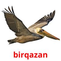 bіrqazan picture flashcards