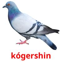 kógershіn picture flashcards
