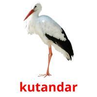 kutandar picture flashcards