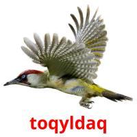 toqyldaq picture flashcards