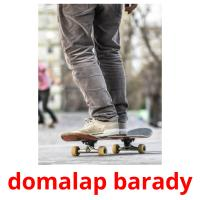 domalap barady picture flashcards