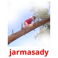 jarmasady picture flashcards