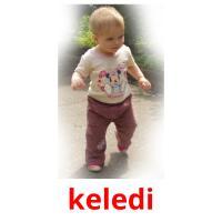keledі picture flashcards