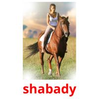 shabady picture flashcards