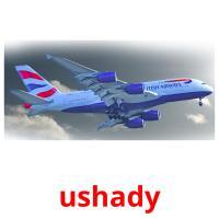 ushady picture flashcards