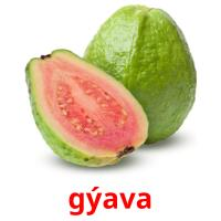 gýava picture flashcards