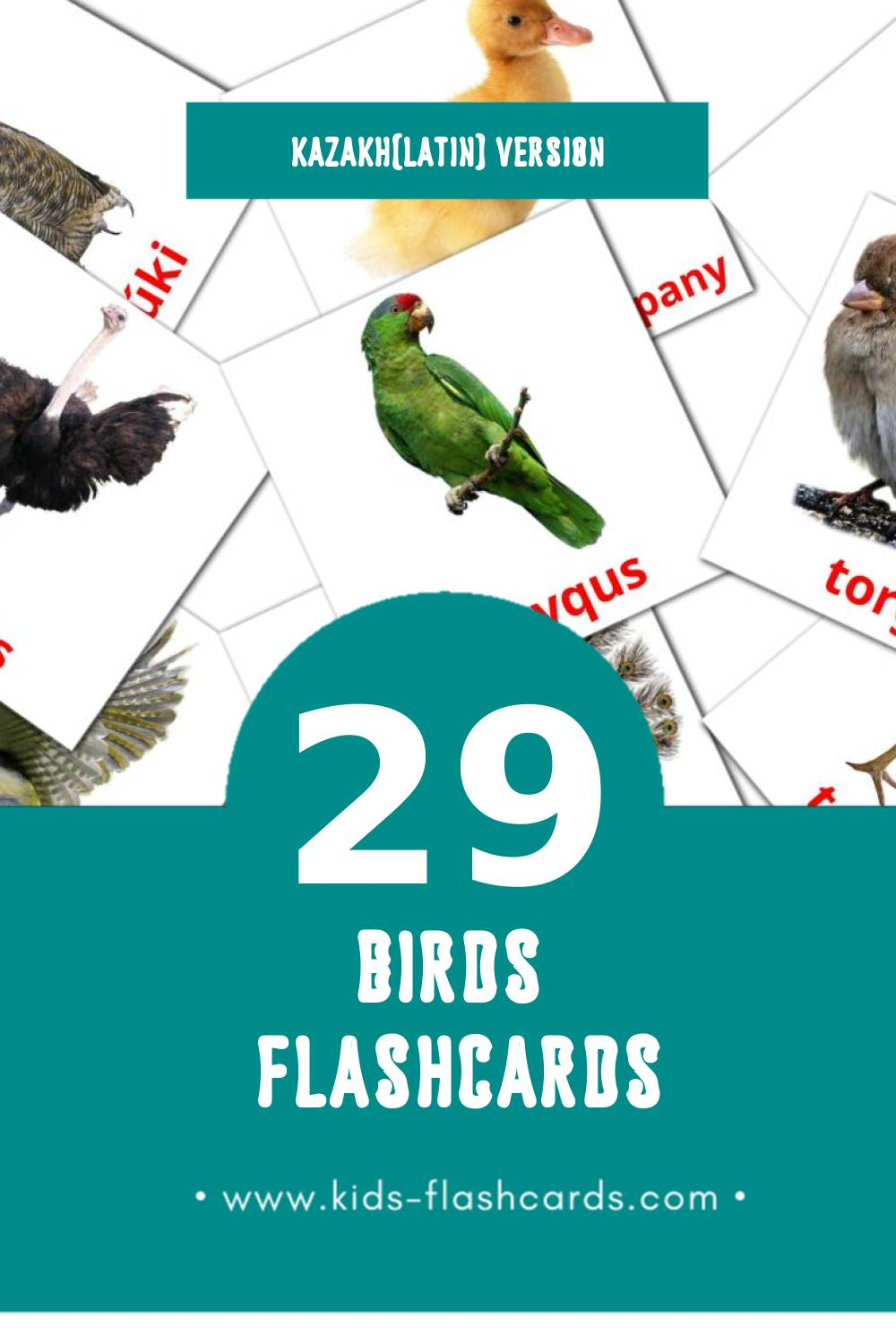 Visual KÝS Flashcards for Toddlers (27 cards in Kazakh(latin))