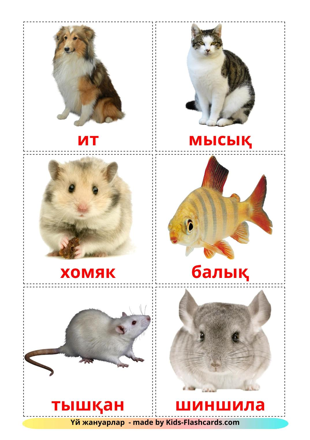 Domestic animals - 10 Free Printable kazakh Flashcards