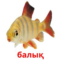 балық picture flashcards