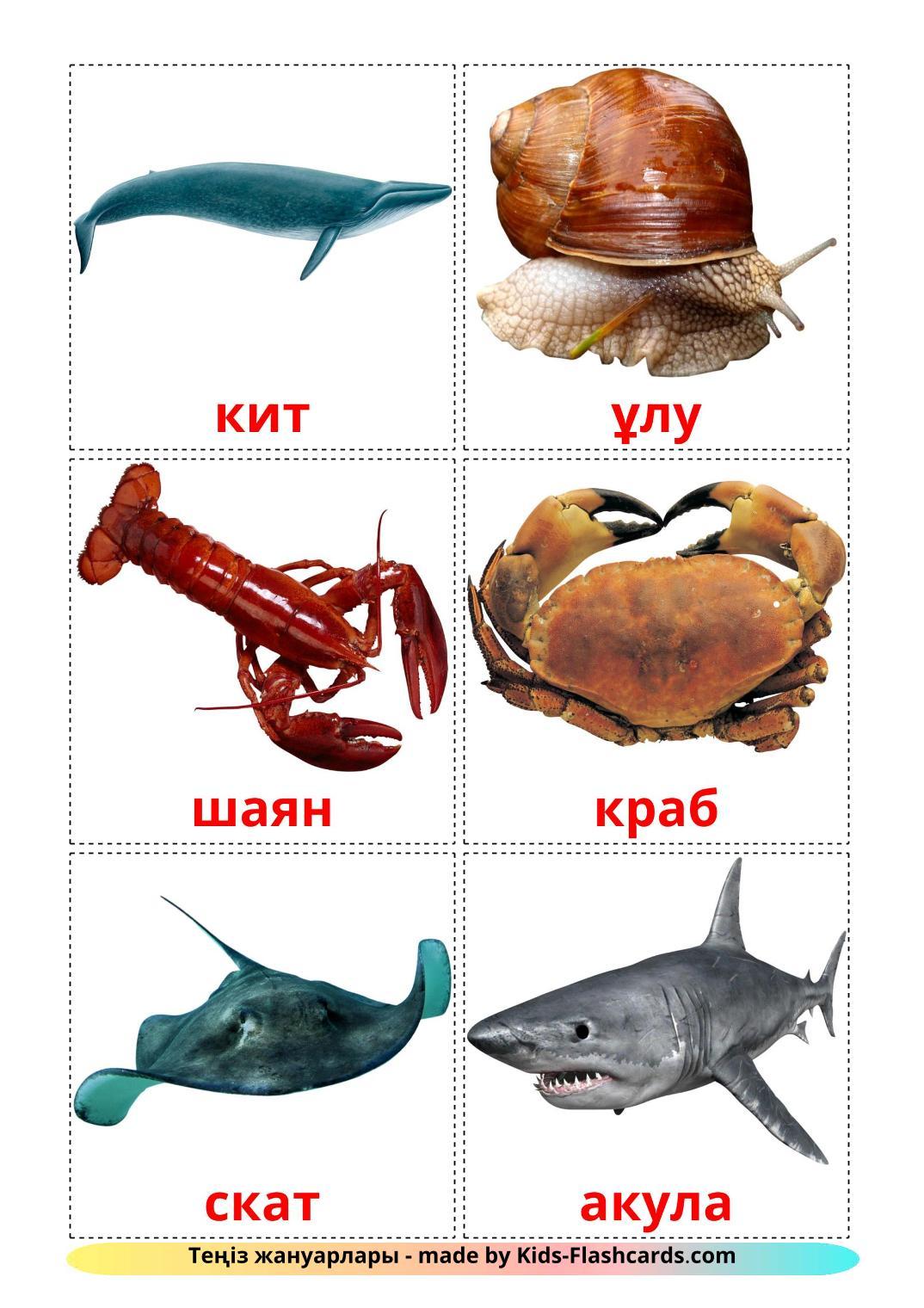 Sea animals - 29 Free Printable kazakh Flashcards