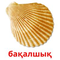 бақалшық picture flashcards