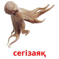 сегізаяқ picture flashcards