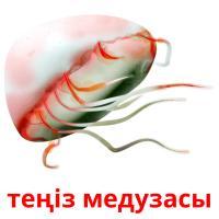 теңіз медузасы picture flashcards