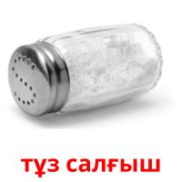 тұз салғыш picture flashcards