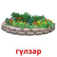 гүлзар picture flashcards