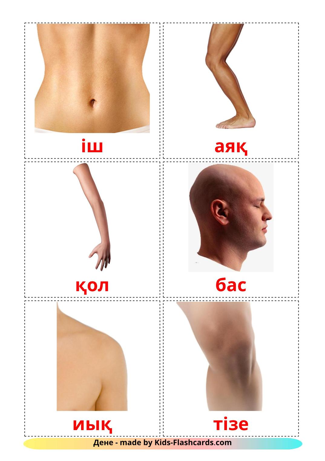 Body Parts - 26 Free Printable kazakh Flashcards